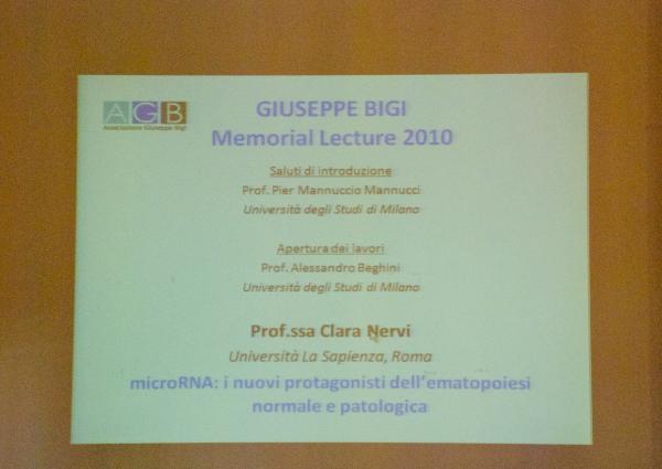 Giuseppe Bigi Memorial Lecture 2010